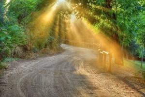 camino_de_luz